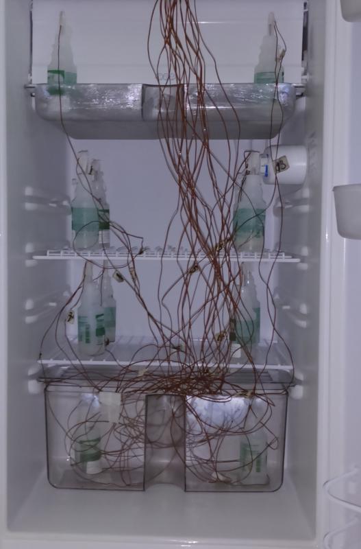 Qualificação de geladeira